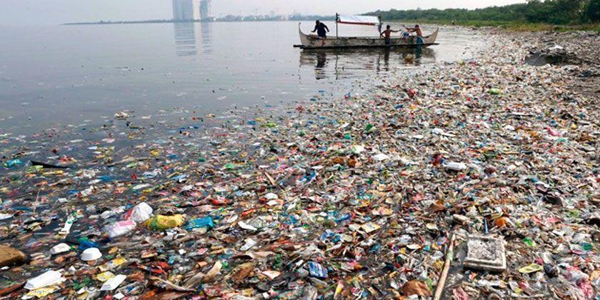 Conservación de los océanos