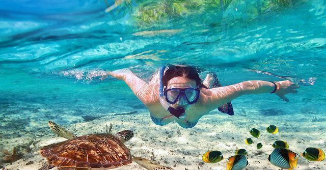 snorkelgood