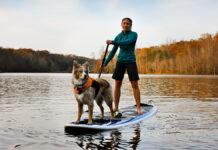 Tablas de Paddle Surf ¿Todavía no tiene la tuya?